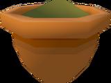 Apple seedling (w)