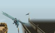 Clan Dragon flying