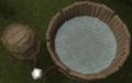Fermenting vat 1 water
