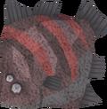Giant flatfish detail.png