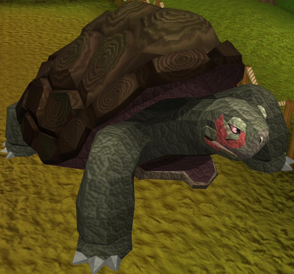 Tortoise runescape wiki fandom powered by wikia release publicscrutiny Gallery