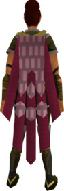 Team-10 cape equipped