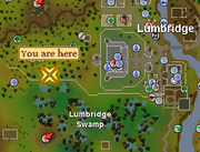 Evil Tree (Lumbridge Swamp) location