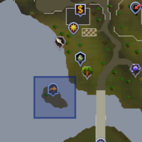 Fairy ring CLP location