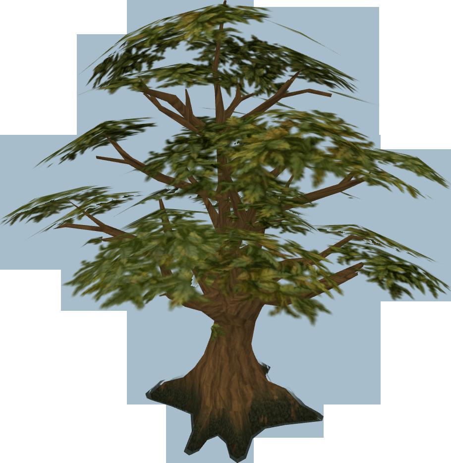 Oak Runescape Wiki Fandom Powered By Wikia