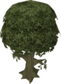 Ailanthus tree.png
