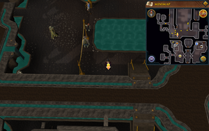 Scan clue Dorgesh-Kaan lower level south of marketplace