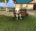 Tiffy on bench.png