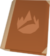Firemaking tome (red) detail
