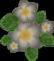 Thumbnail for version as of 02:44, May 23, 2014