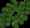 Seaweed (Hunt for Red Raktuber) detail