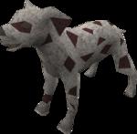 Dalmatian puppy (red) pet