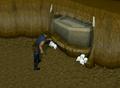Looting ogre coffins.png