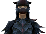 Black dragonhide armour