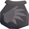 Sp. pengatrice pouch(u) detail