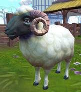 White ram (NPC)