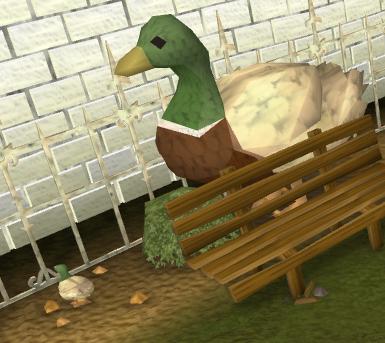 File:Ducks.png