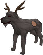 Patch (antlers)