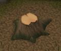 Yew tree stump.png