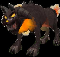 Adolescent-blazehound