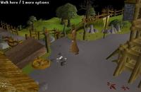 Barbarian village 2004