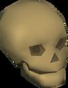 Shade skull detail