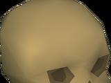 Shade skull