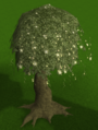 Magic tree built.png