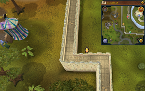 Scan clue Falador south-west of gem shop