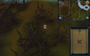 Compass clue Draynor east of Draynor Manor