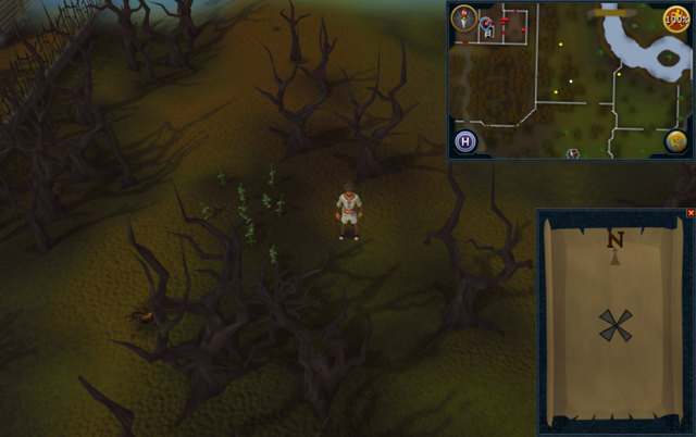 File:Compass clue Draynor east of Draynor Manor.png