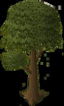 Árvore normal