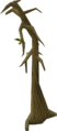 Dying tree.png