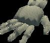 Hand bone detail