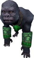 Jungle Gorilla (adolescent).png