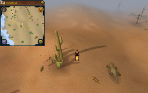 Scan clue Kharidian Desert north-west of desert lizards