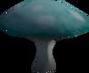 Wintercup mushroom detail