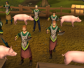 Bringing Home the Bacon teaser 2.png