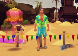 Pet Shop (Summer Beach Party)