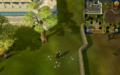 Compass clue Draynor south-east of Falador.png