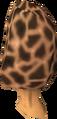 Morchella mushroom detail.png