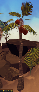 Palm tree (Summer Beach Party)
