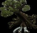 Season Tree.png