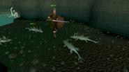 Waterbirth Dungeon 4