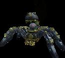 Dr Spider MD