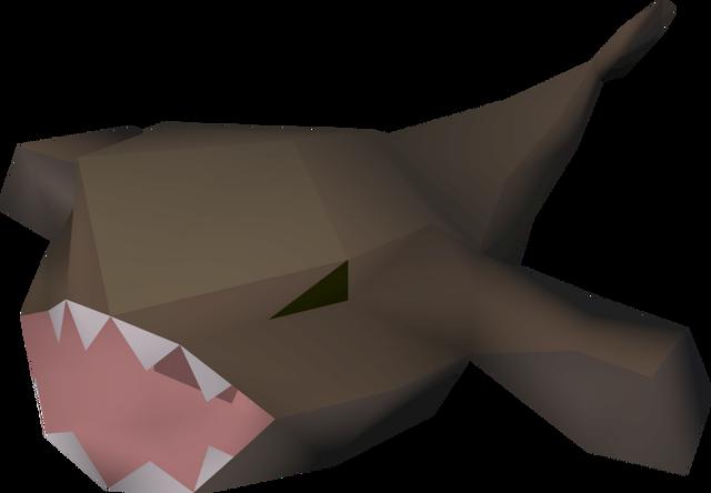 File:Fresh monkfish detail.png
