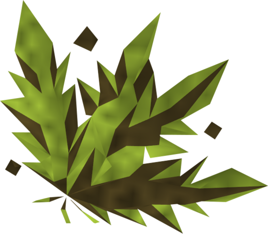File:Grimy snake weed detail.png