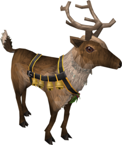 Rory the Reindeer adolescent