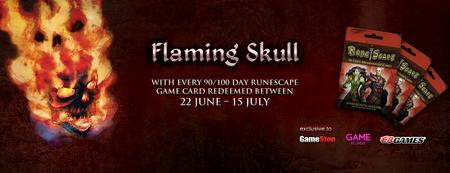 Flaming Skull Banner
