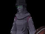 New Varrock guard
